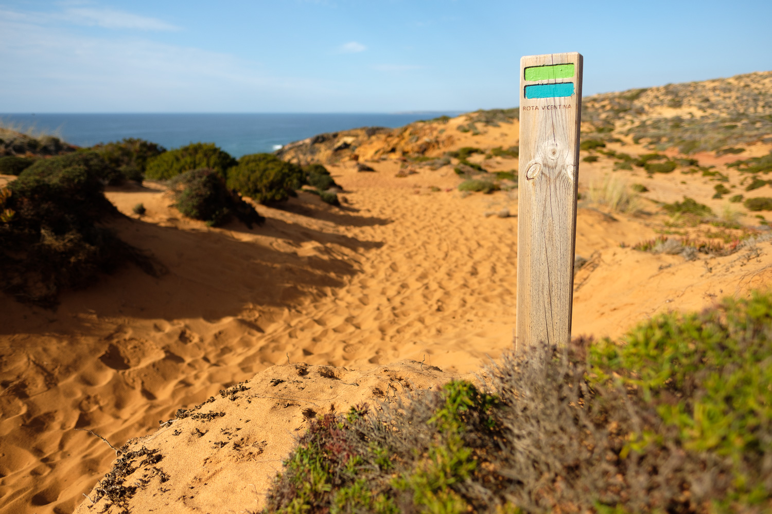 On the Vicentina trail